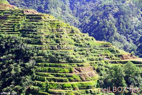 The Banaue Rice Terraces, Ifugao Province. (Photo by Mary Anne Velas-Suarin)