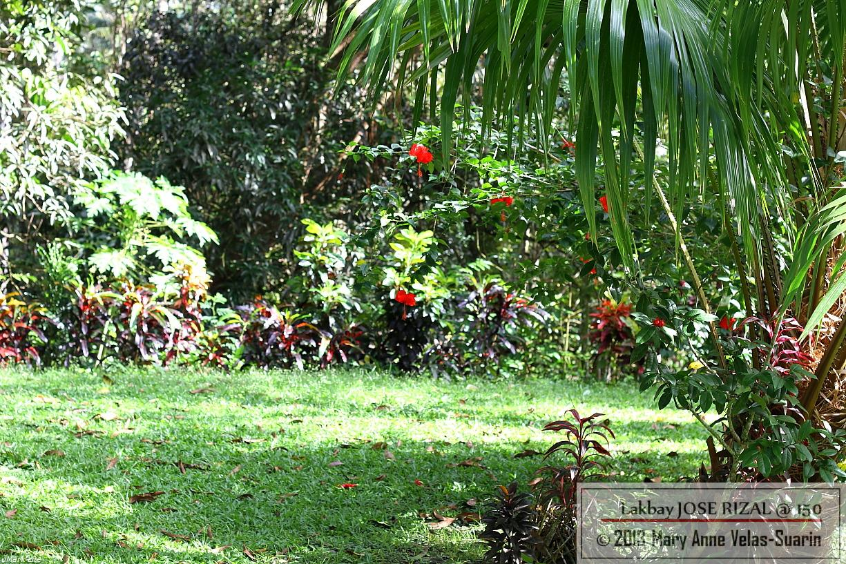 Rizal and his pupils tended this farm on weekends. [Photo by Mary Anne Velas-Suarin]