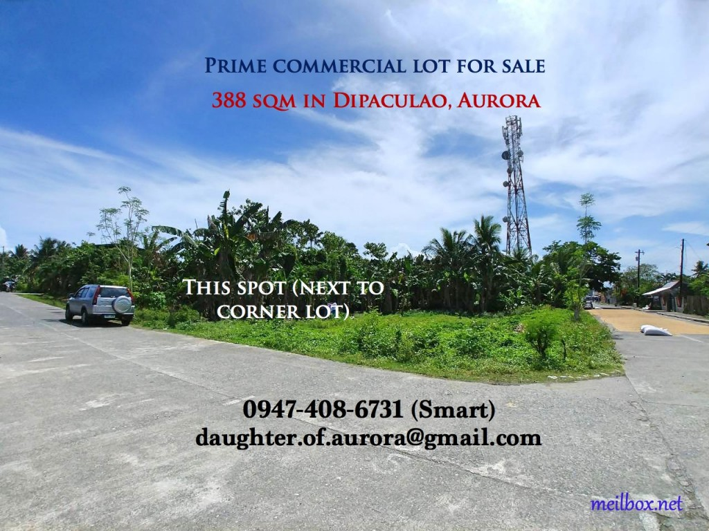Prime commercial lot in Dipaculao, Aurora (very near the town's center & marketplace), 388 sqm, perfect for agricultural supply store, bed & breakfast (Dipaculao is just about 25-35 minutes away to Baler and about 15 mins. away to Ampere Beach), dormitory/transient house, rural bank, etc.